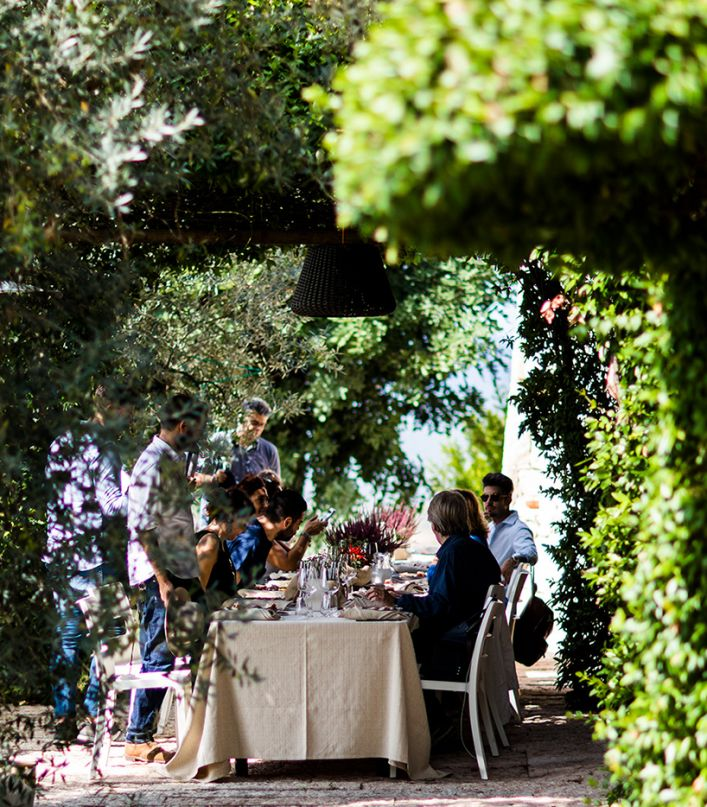 Extra Experience: visita dei vigneti e della cantina Petra con degustazione di 3 vini e lunch