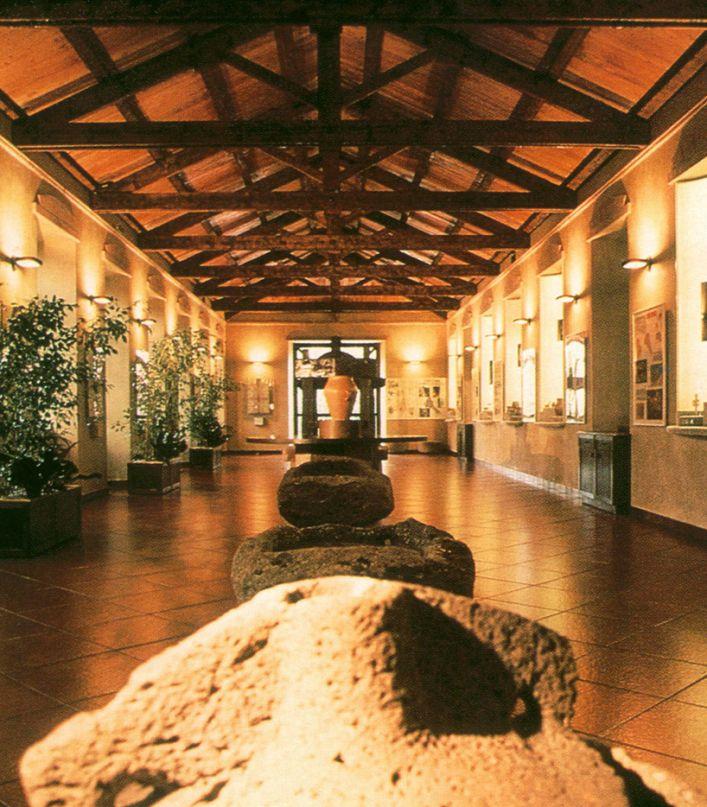 Visita delle Cantine, del museo storico aziendale e degustazione finale
