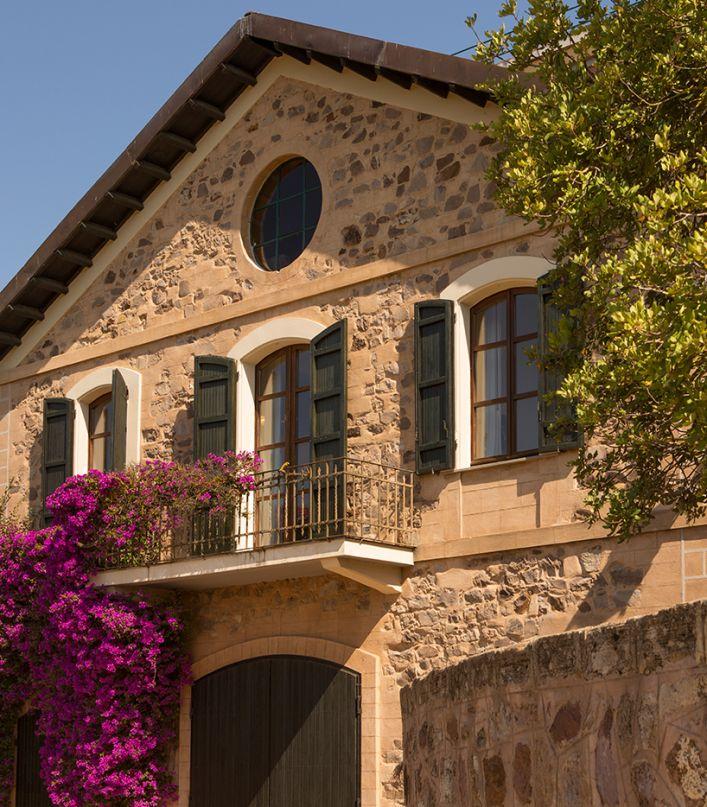 Fra passato e presente: visita delle Cantine e degustazione di 4 vini accompagnati da pane carasau