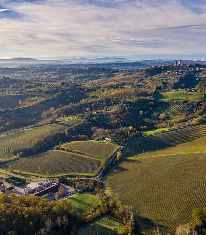Toscana inedita e suggestiva: tour virtuale della cantina con degustazione di 3 vini e prodotti tipici toscani