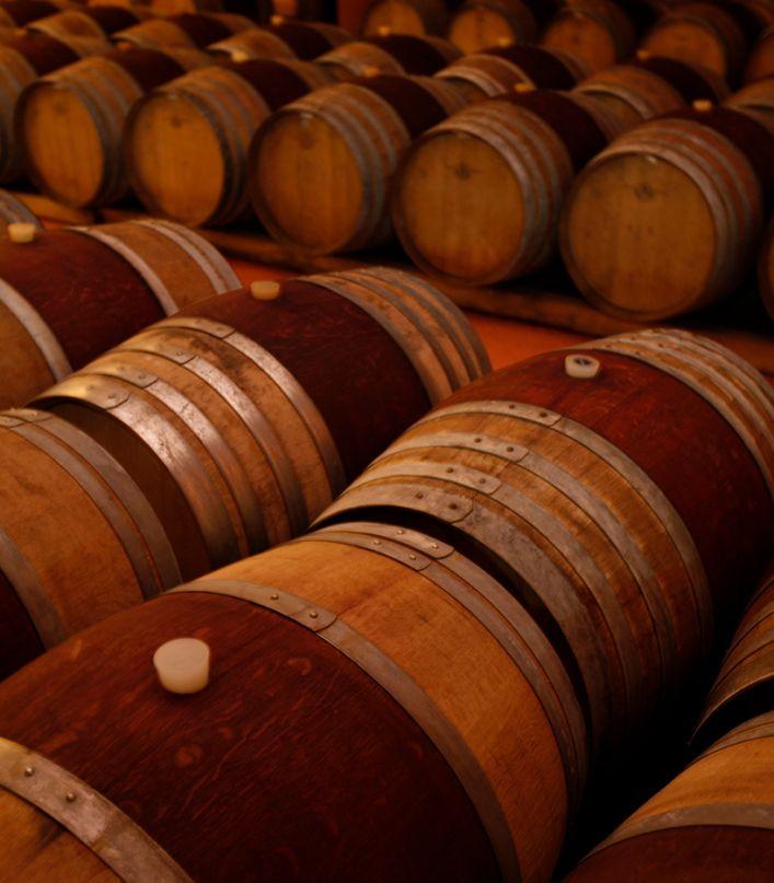 Degustazione dei 4 vini Acquagiusta e And'Olio della Maremma